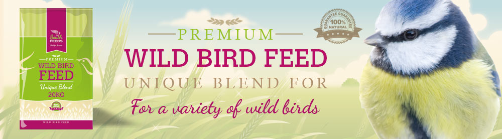 Superior Wild Bird Feed Suppliers